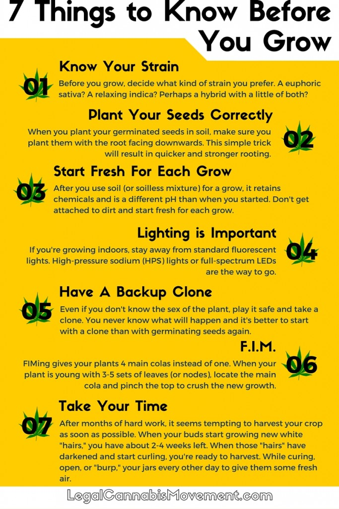 7 Things Before You Grow (1)
