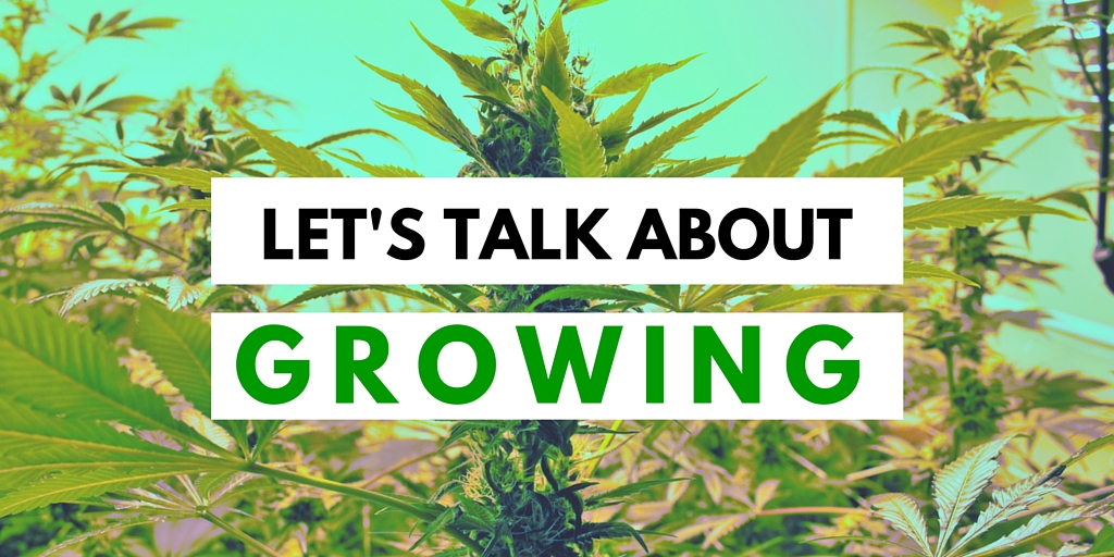 Growing Header Image