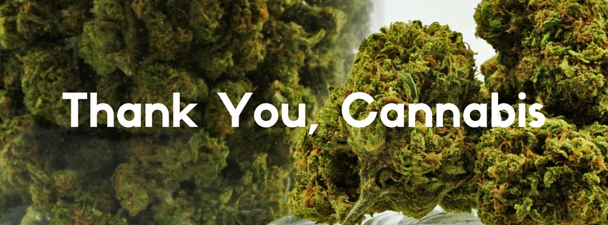 Thank You, Cannabis