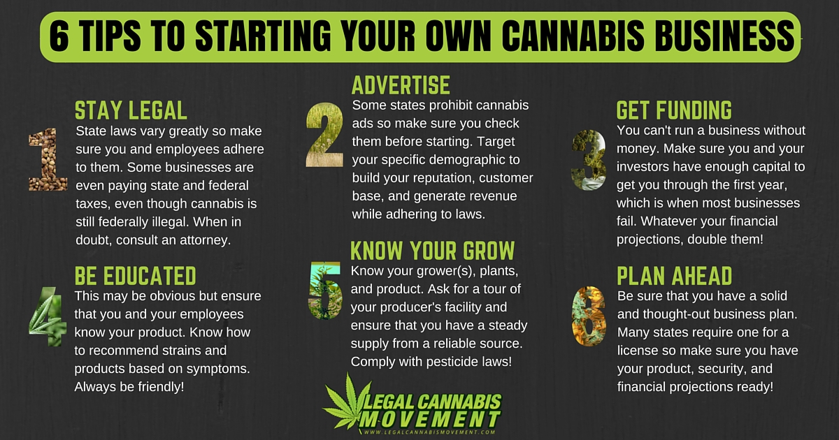 6 TIPS TO STARTING YOUR CANNABIZ
